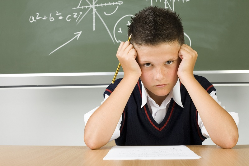 Why Do You Need Them? Children's Questions That Put Adults In A Dead End!
